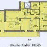 Plan. Volta P. Primo 3 camere